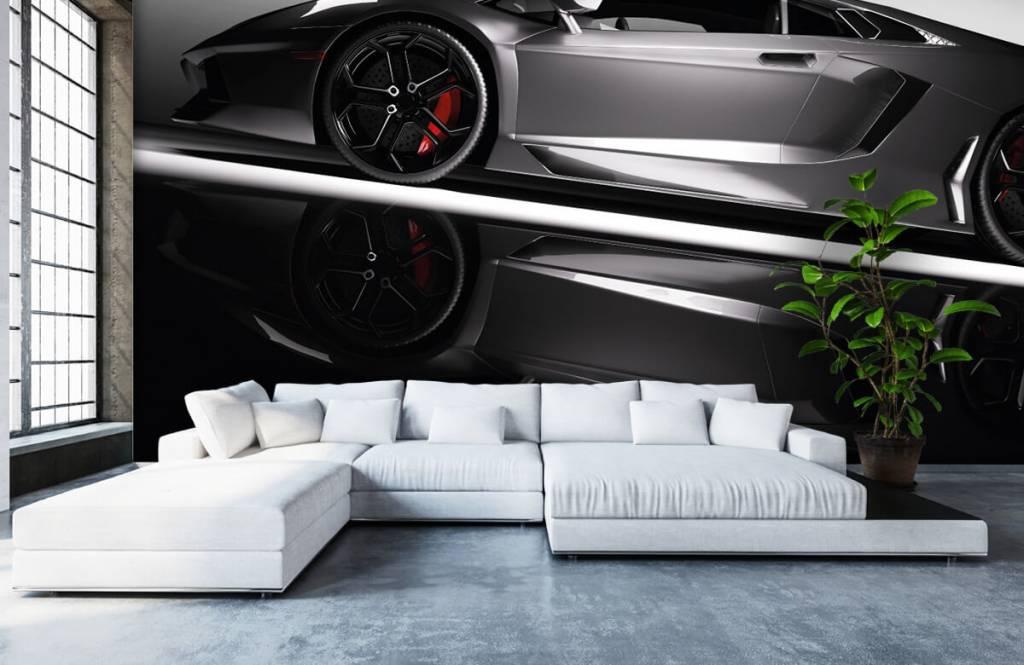 Transportation - Grey Lamborghini - Teenage room 6