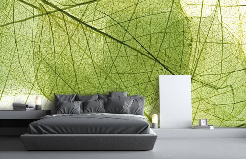 Leaves - Green leaves - Bedroom 1