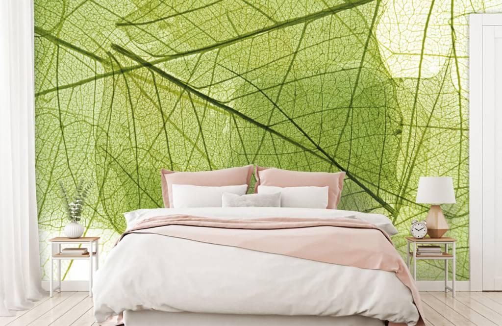 Leaves - Green leaves - Bedroom 2