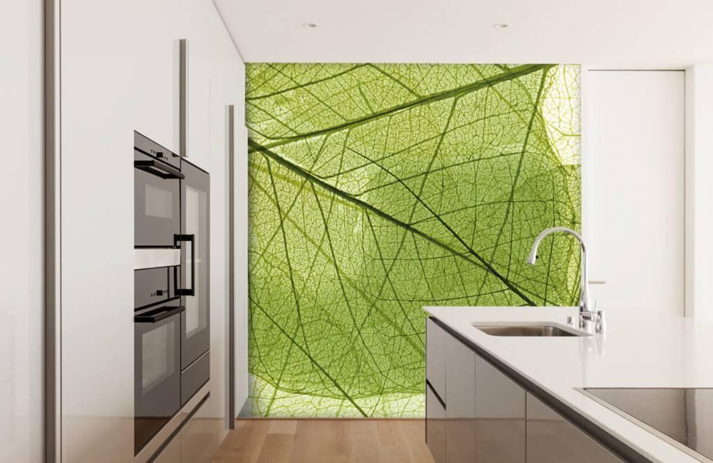 Leaves - Green leaves - Bedroom 3