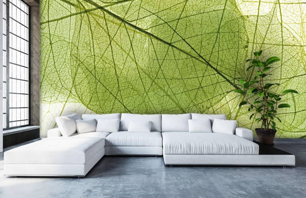 Leaves - Green leaves - Bedroom 4