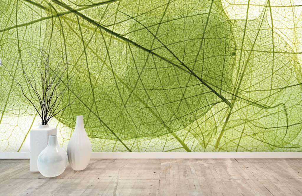 Leaves - Green leaves - Bedroom 5