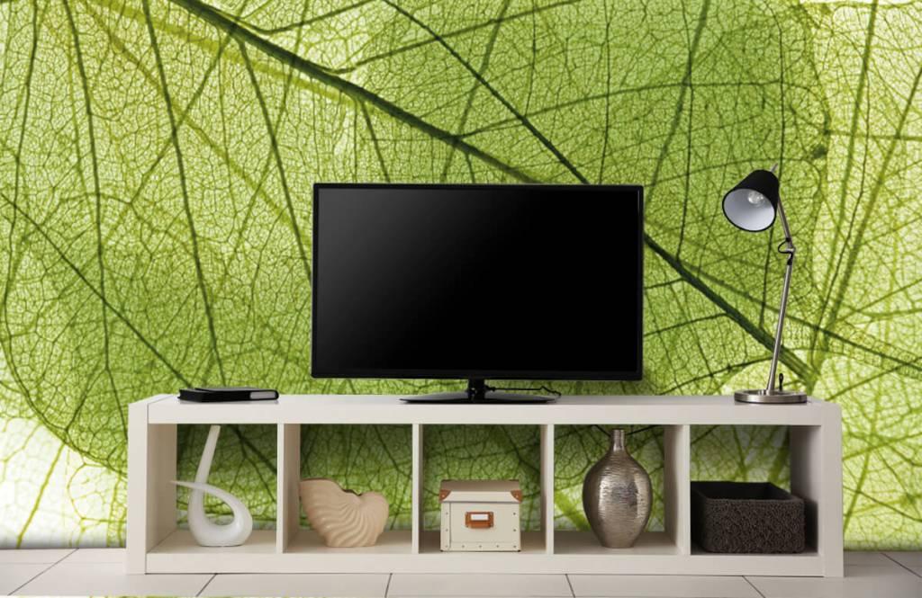 Leaves - Green leaves - Bedroom 6