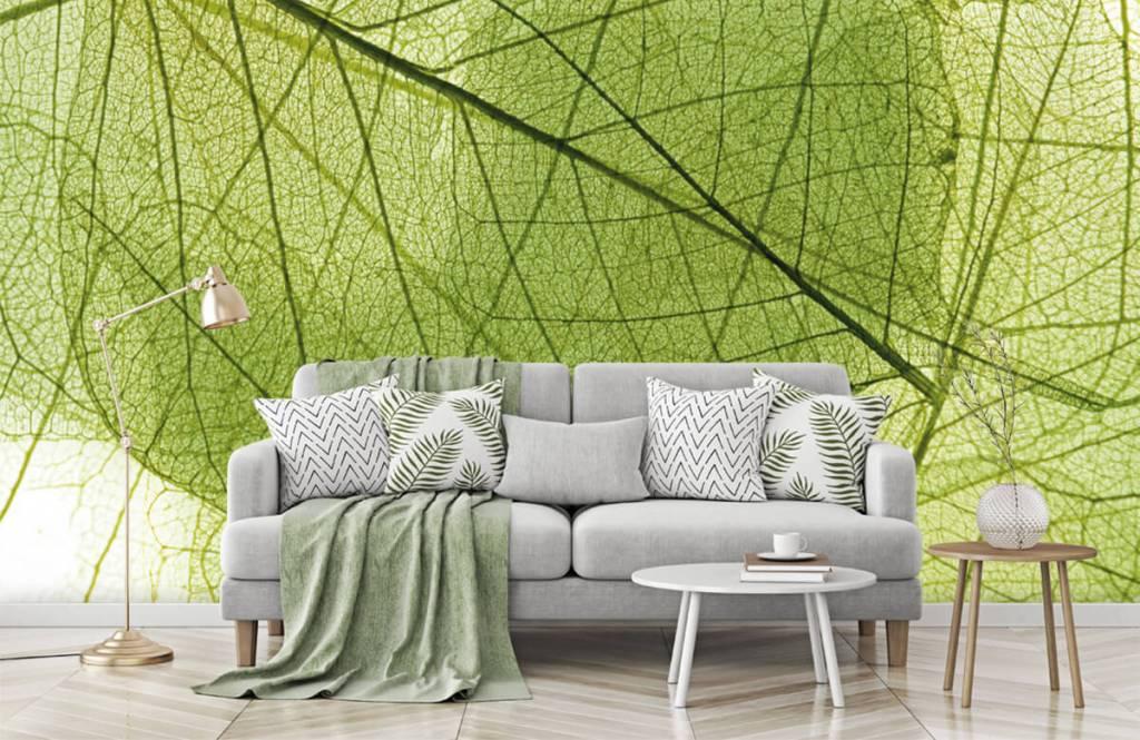 Leaves - Green leaves - Bedroom 8