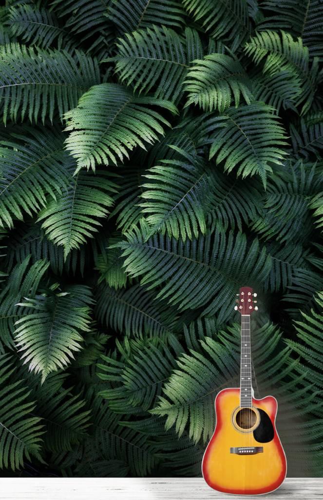 Leaves - Large palm leaves - Living room 3