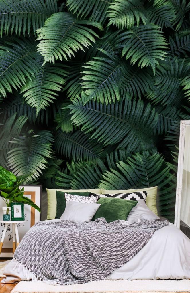 Leaves - Large palm leaves - Living room 6