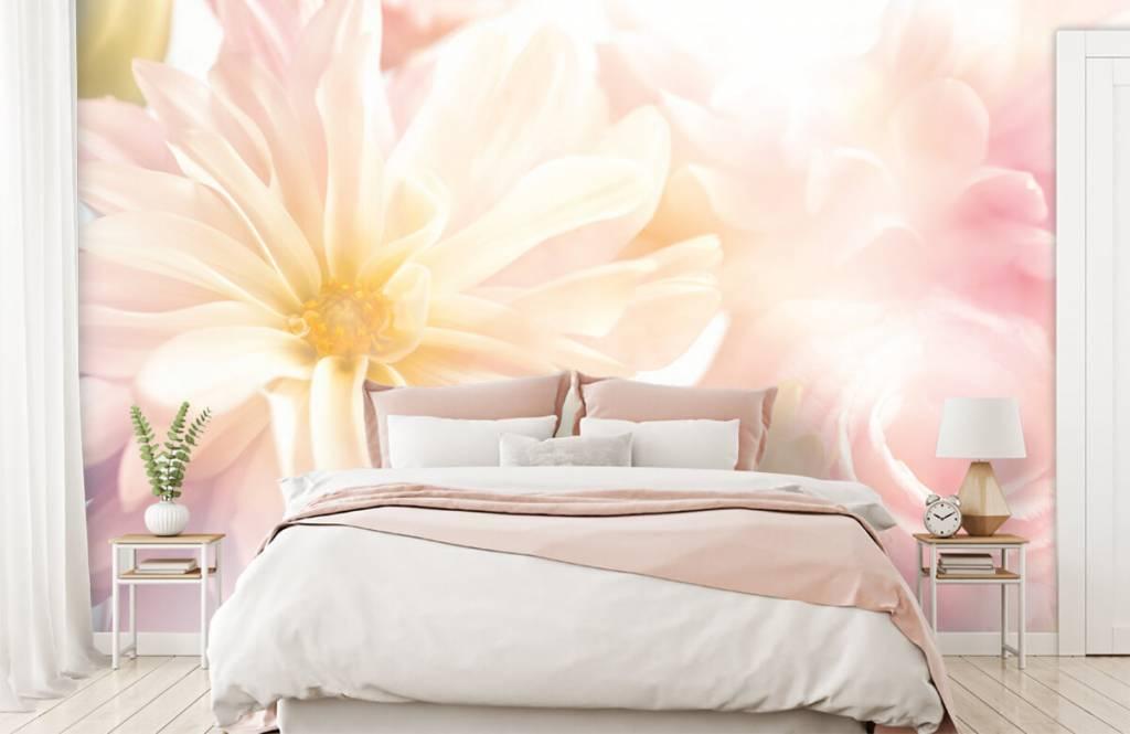 Flower fields - Clear flowers - Bedroom 1
