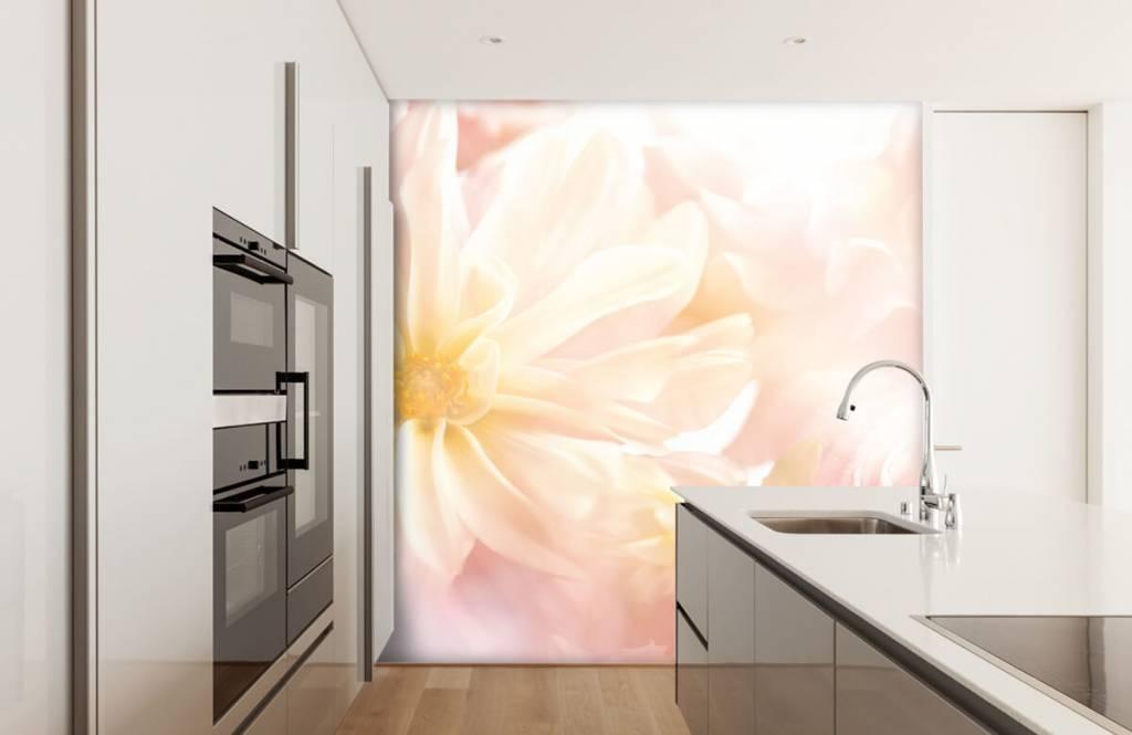 Flower fields - Clear flowers - Bedroom 3