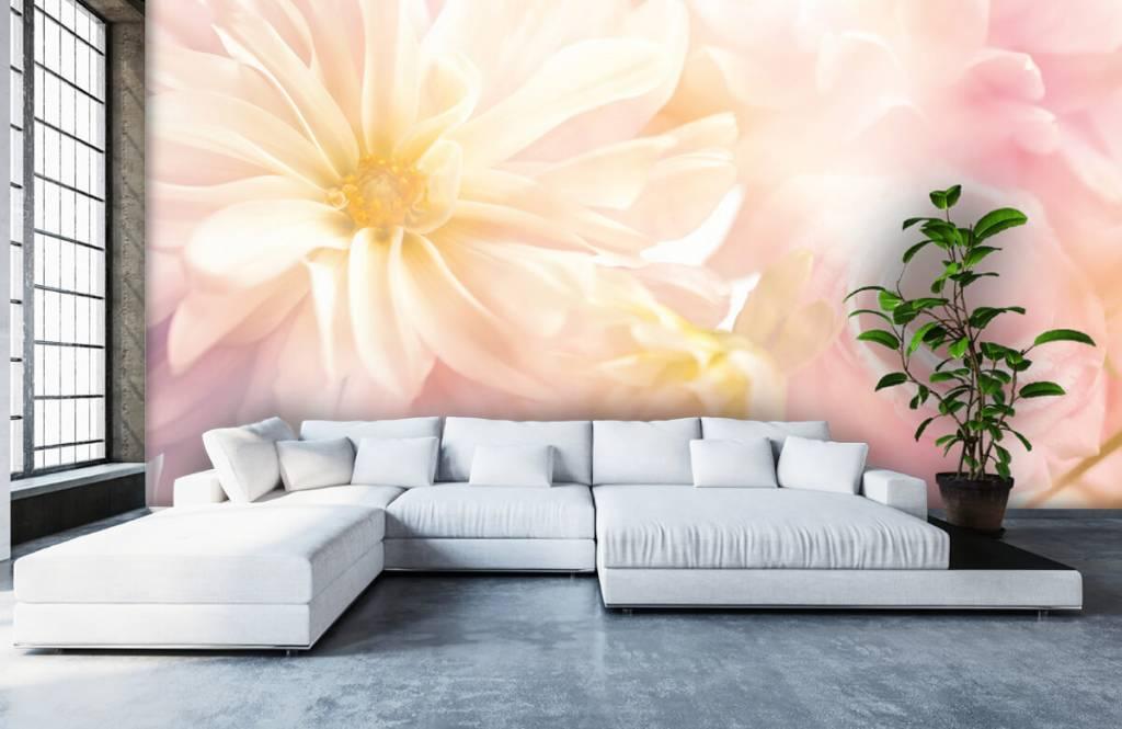 Flower fields - Clear flowers - Bedroom 5