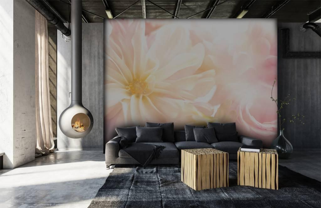 Flower fields - Clear flowers - Bedroom 6
