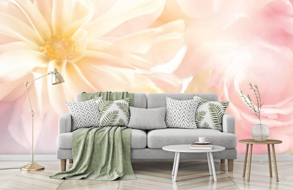 Flower fields - Clear flowers - Bedroom 7