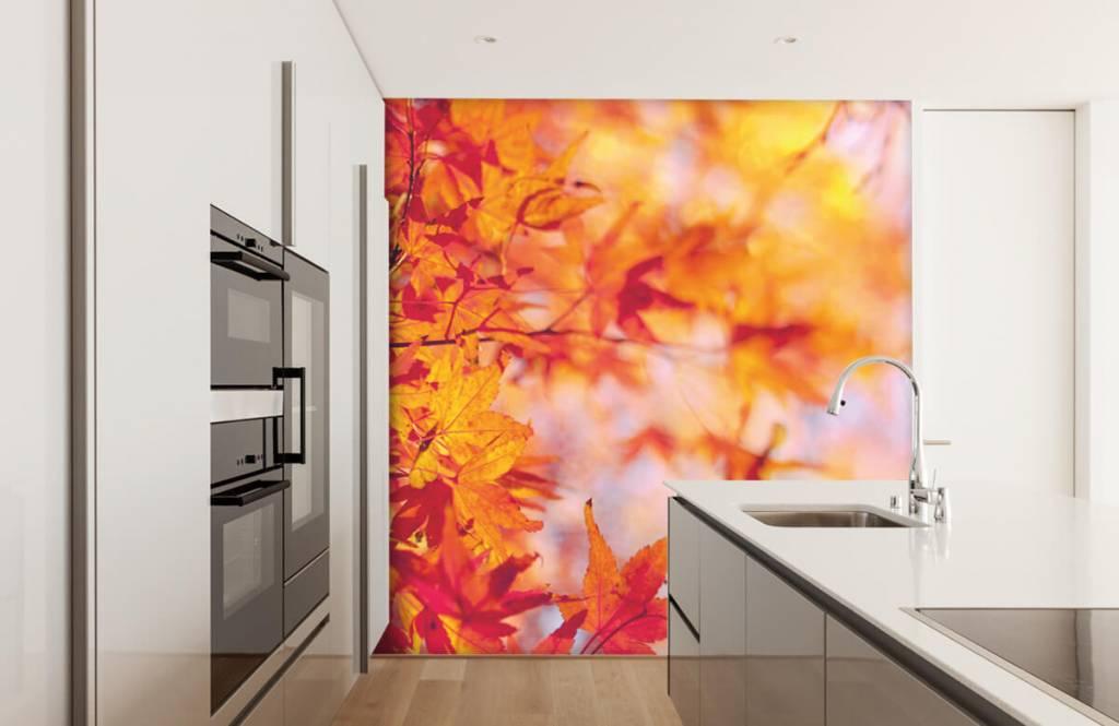 Leaves - Autumn leaves - Bedroom 3
