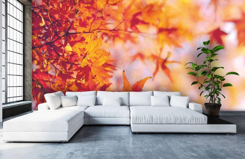 Leaves - Autumn leaves - Bedroom 5