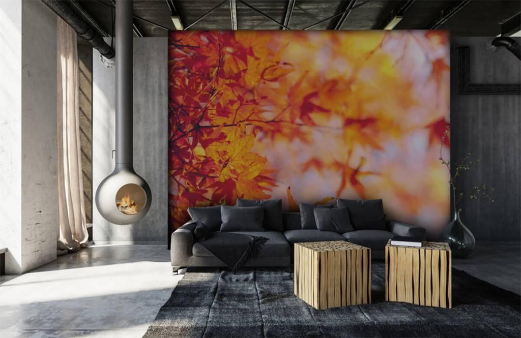Leaves - Autumn leaves - Bedroom 6