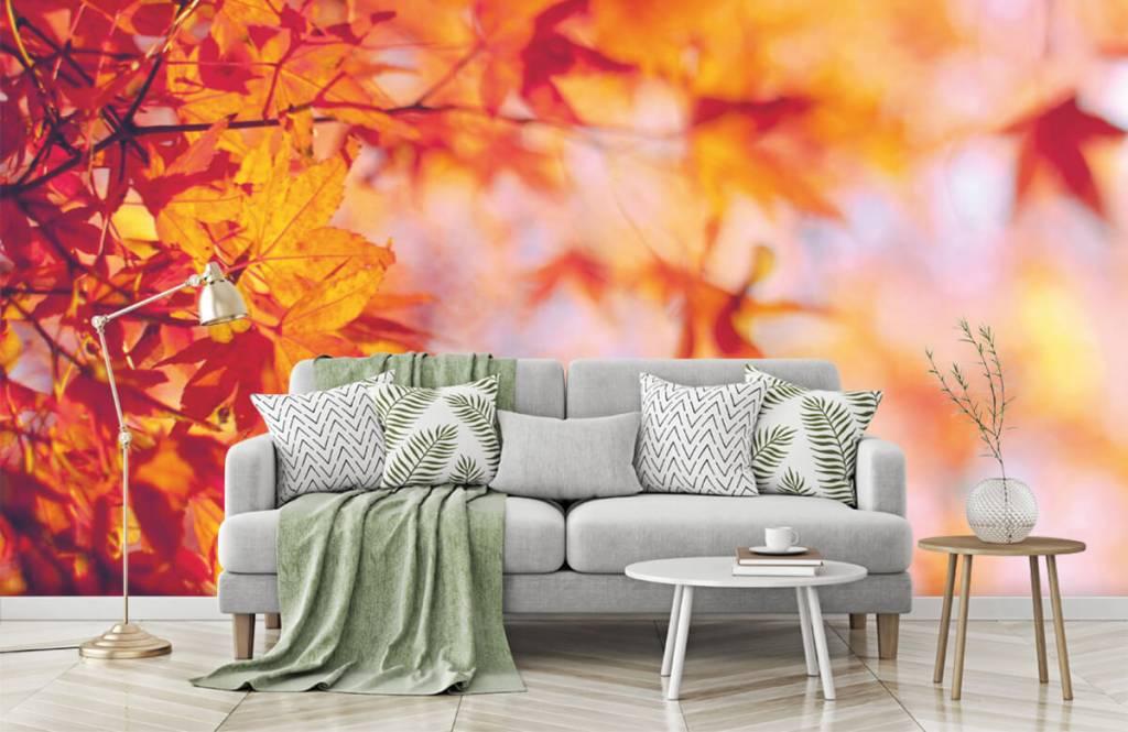 Leaves - Autumn leaves - Bedroom 7