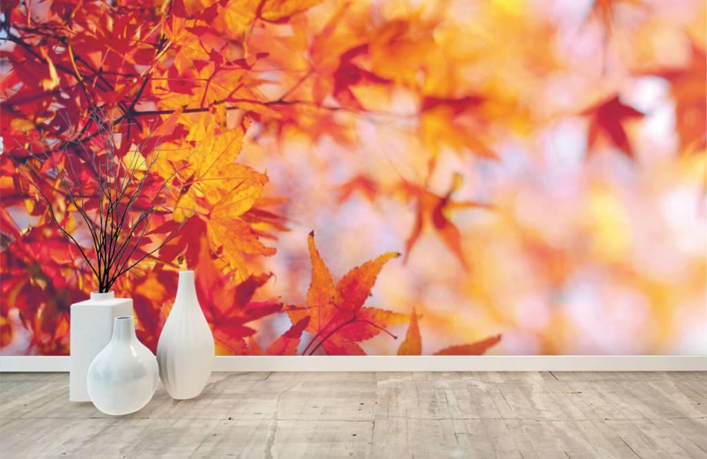 Leaves - Autumn leaves - Bedroom 8