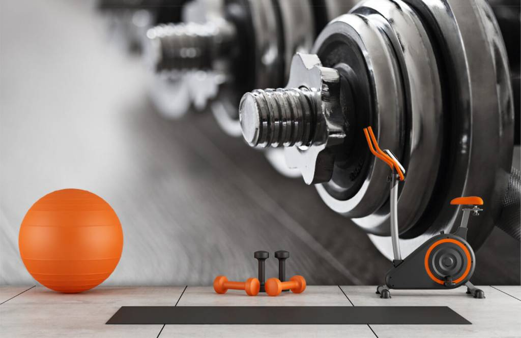 Fitness - Classic dumbells - Hobby room 1