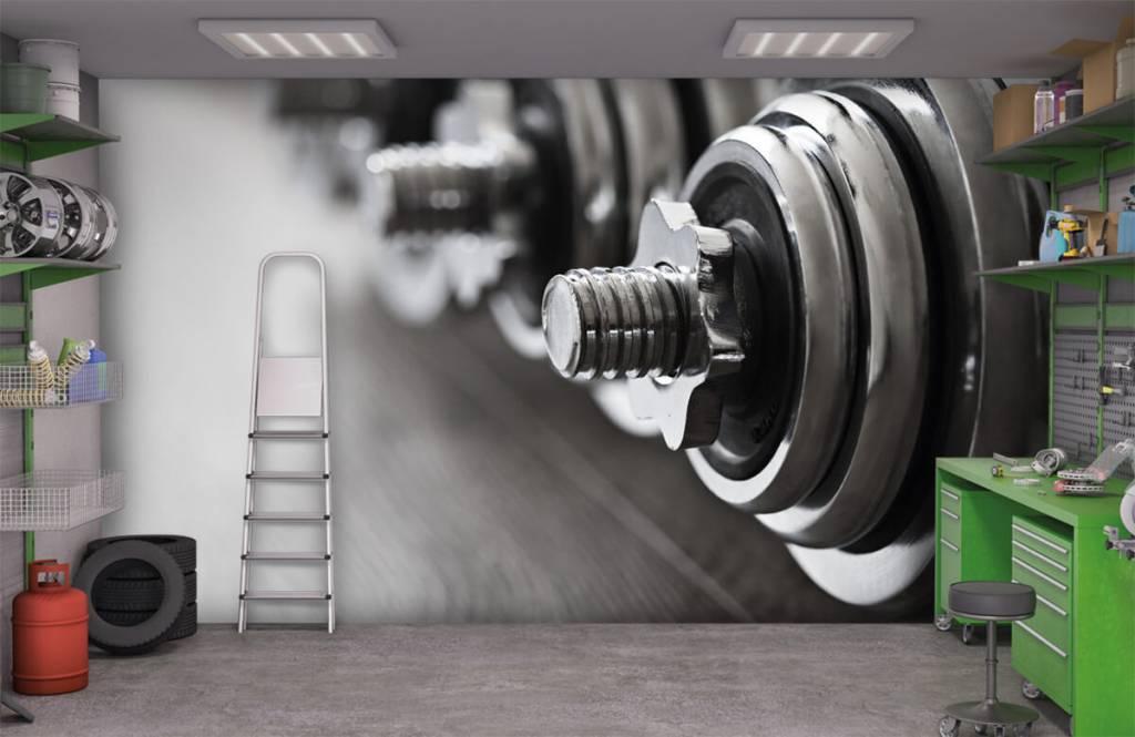 Fitness - Classic dumbells - Hobby room 3