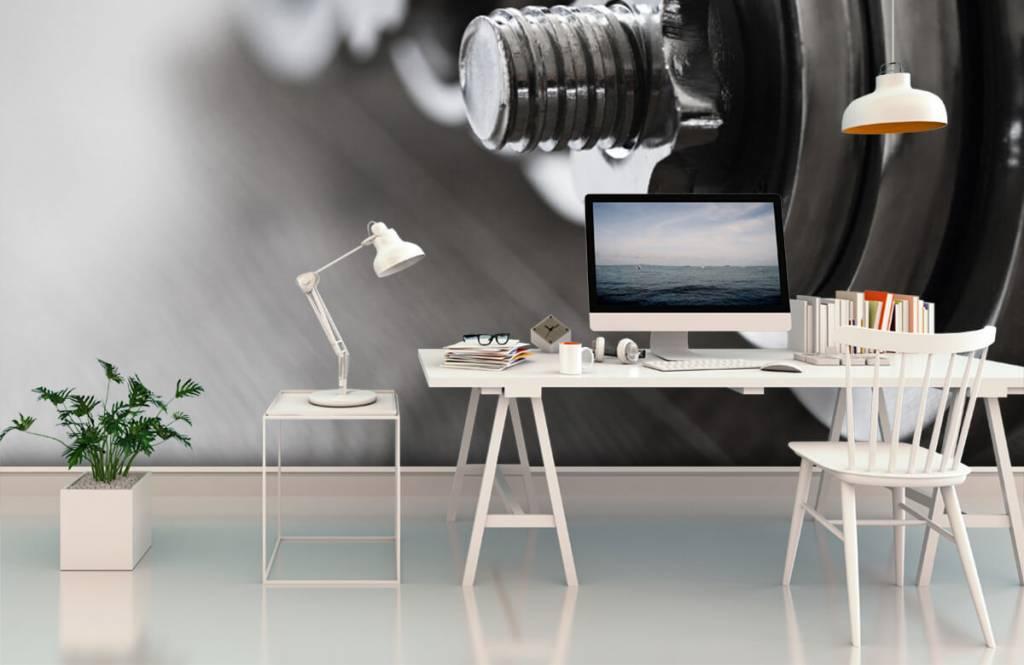 Fitness - Classic dumbells - Hobby room 4