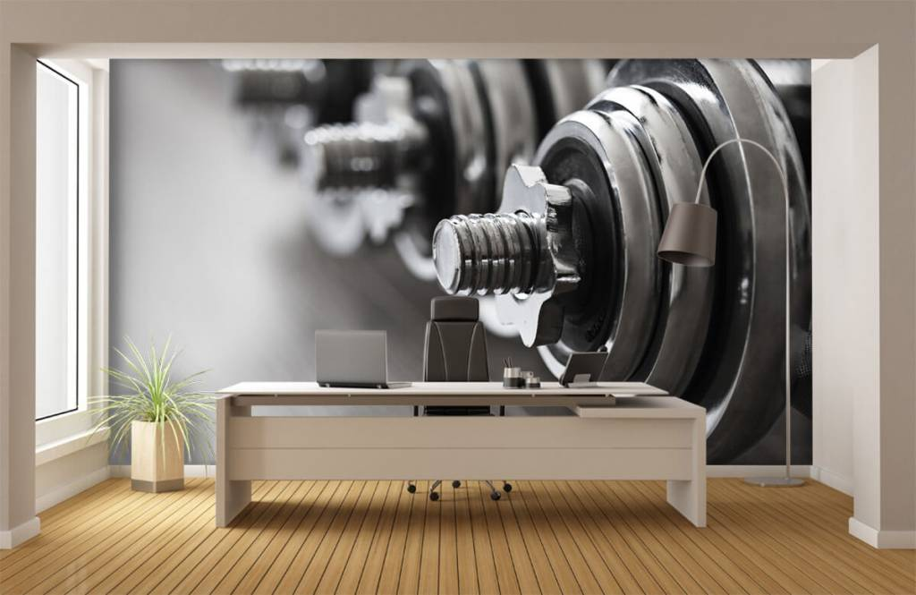 Fitness - Classic dumbells - Hobby room 5