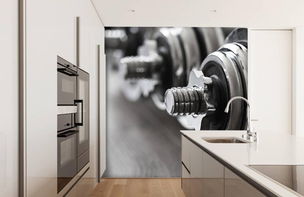 Fitness - Classic dumbells - Hobby room 6
