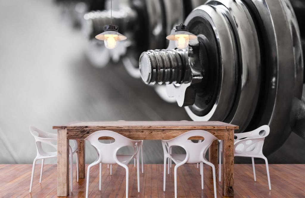 Fitness - Classic dumbells - Hobby room 8