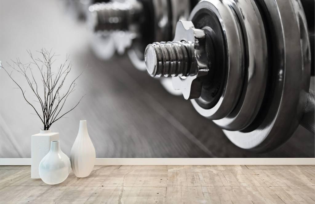 Fitness - Classic dumbells - Hobby room 9