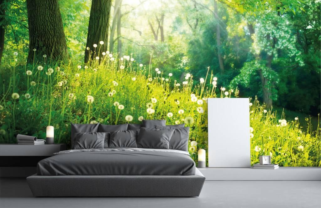 Forest wallpaper - Dandelions - Bedroom 2