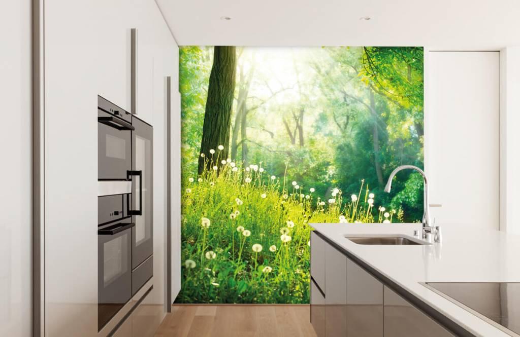 Forest wallpaper - Dandelions - Bedroom 3