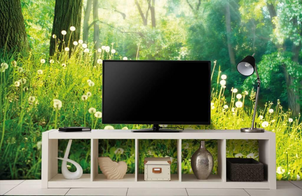 Forest wallpaper - Dandelions - Bedroom 4