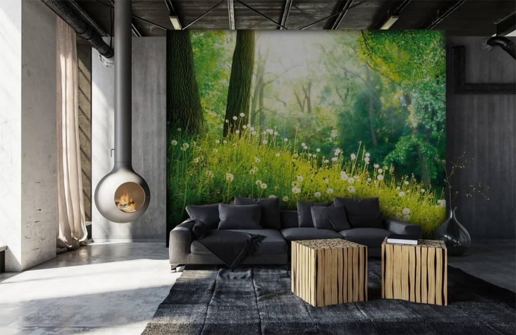 Forest wallpaper - Dandelions - Bedroom 6