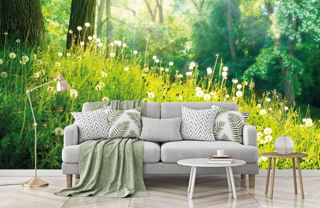 Forest wallpaper - Dandelions - Bedroom 7