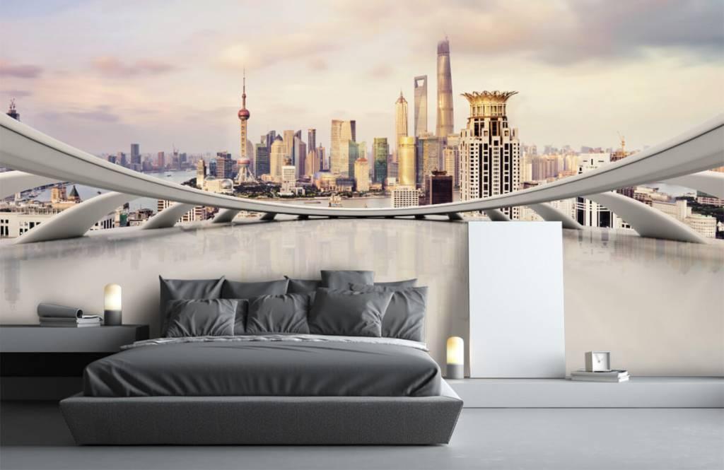 Skylines - Skyline of Shanghai - Computer room 4