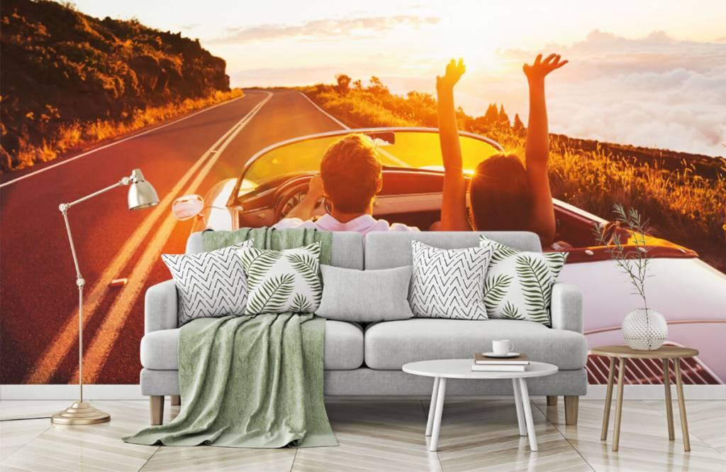 Transportation - Sunset driving - Teenage room 8