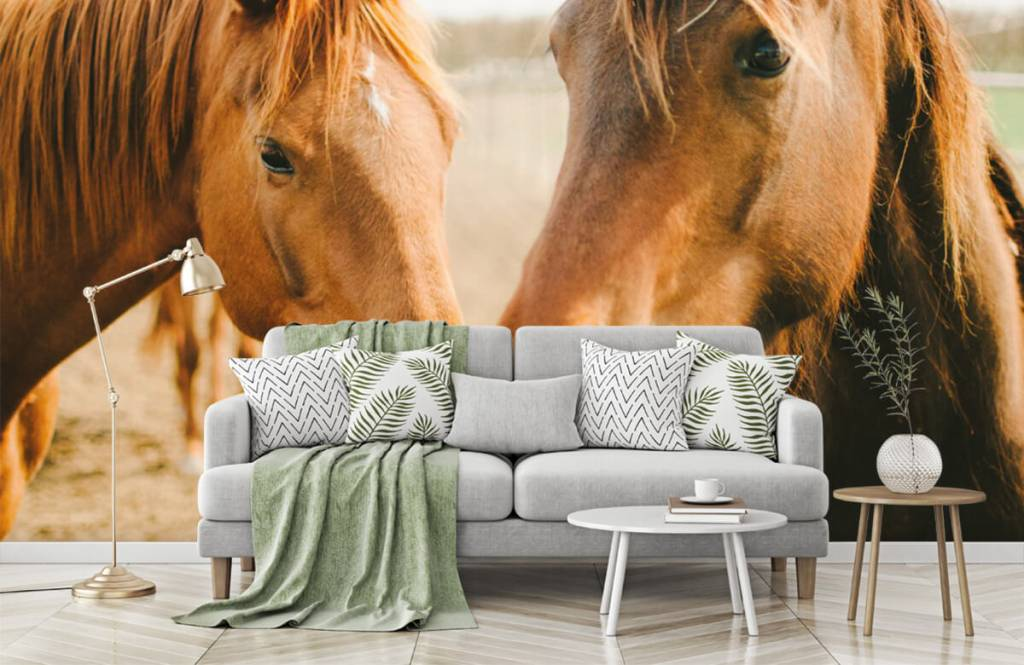 Horses - Two horses - Children's room 5