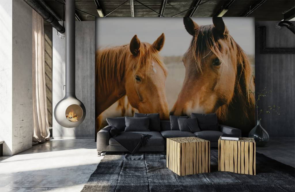Horses - Two horses - Children's room 6