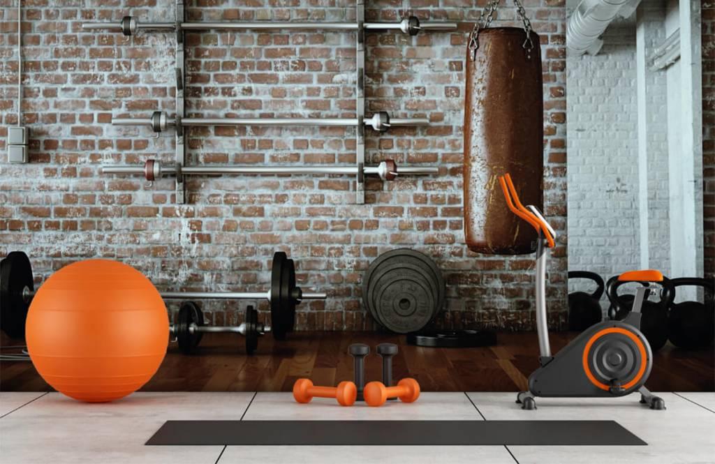 Fitness - Vintage gym items - Hobby room 9