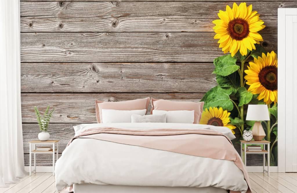 Sunflower - Sunflowers and wood - Garage 1