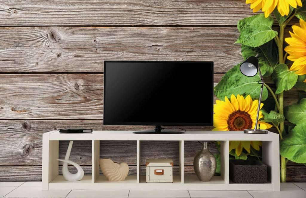 Sunflower - Sunflowers and wood - Garage 4