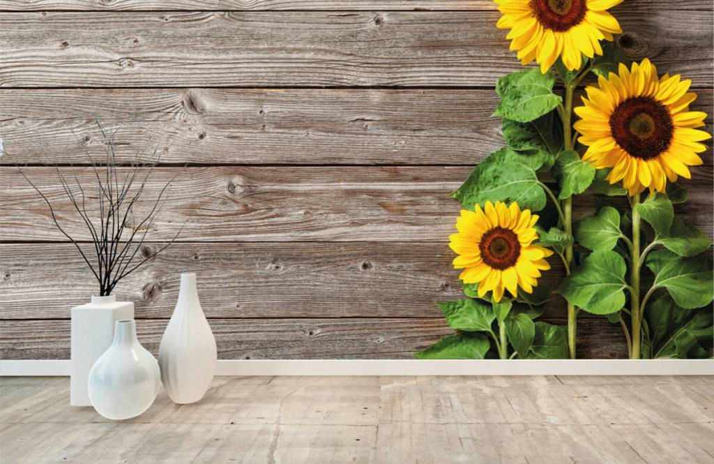Sunflower - Sunflowers and wood - Garage 8