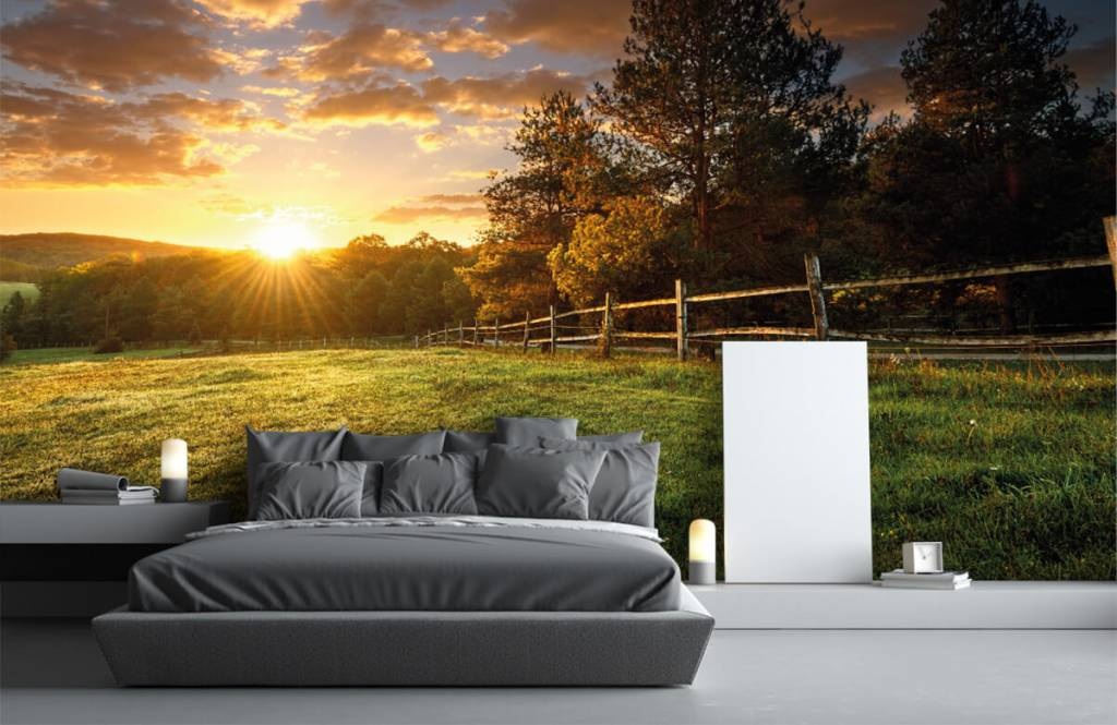 Landscape wallpaper - Pasture at sunset - Bedroom 1