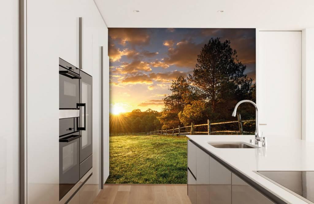 Landscape wallpaper - Pasture at sunset - Bedroom 3