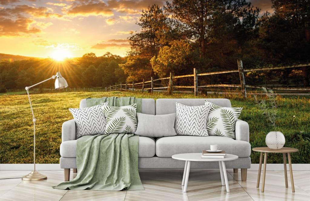 Landscape wallpaper - Pasture at sunset - Bedroom 7