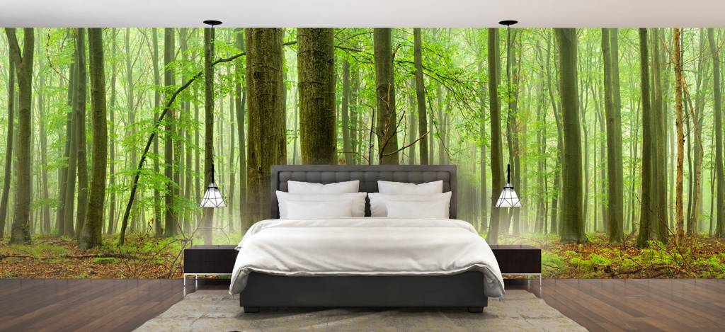 Forest wallpaper - Forest of beech trees - Conference room 1