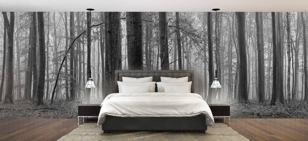 Forest wallpaper - Forest of beech trees - Conference room 2