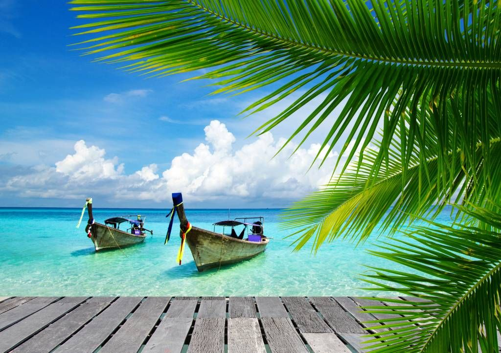 Palmtrees - Boat and a palm tree - Living room