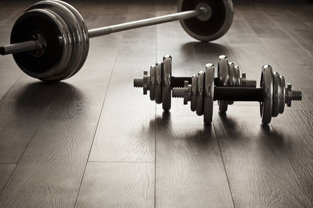 Fitness - Dumbells and weights - Hobby room
