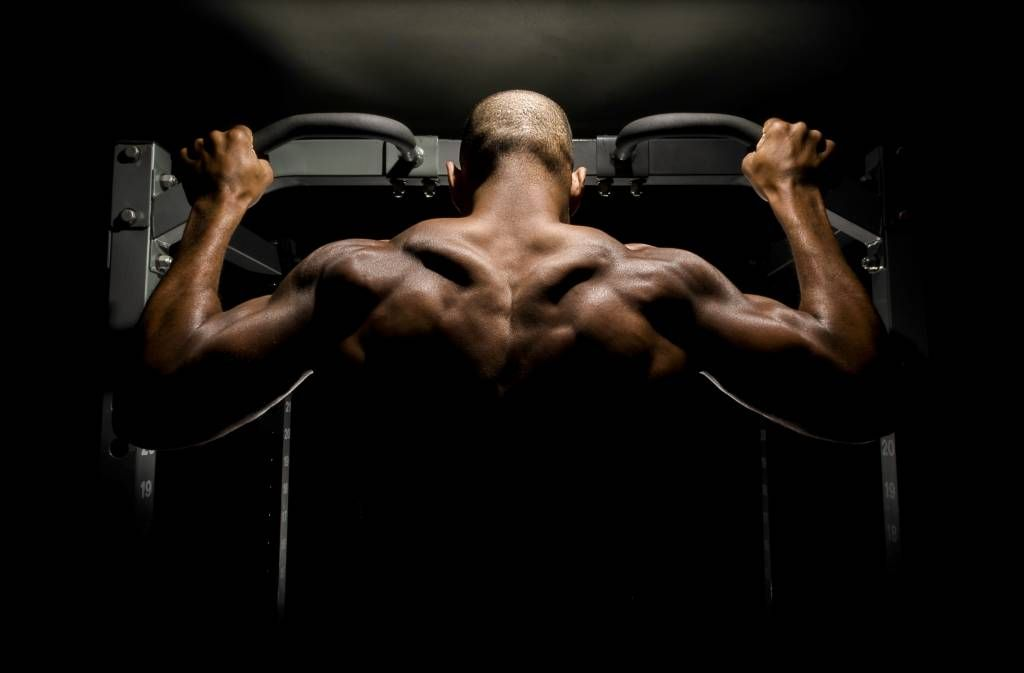 Fitness - Man with a muscular back - Garage