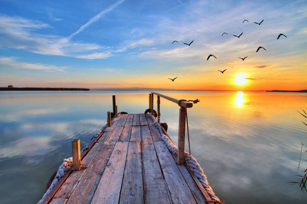 Lakes and Waters - Birds above the sea - Bedroom