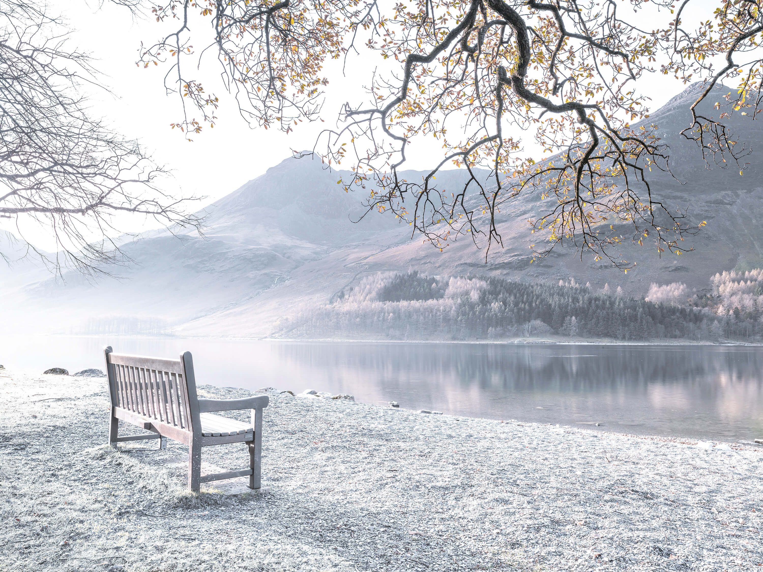 Bench by a quiet lake